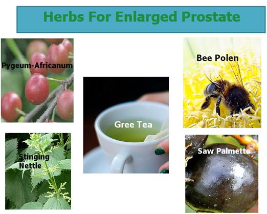 herbs  prosate