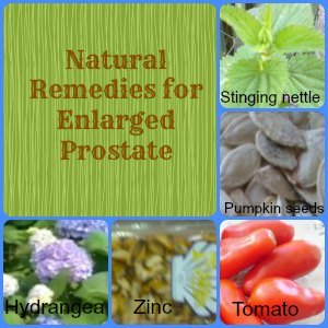 natural herbs for enlarged prostate